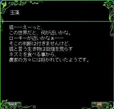 eco_img0184.JPG